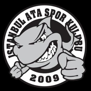 Ata Spor